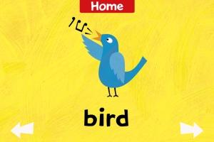 Soundboard-screen-Bird